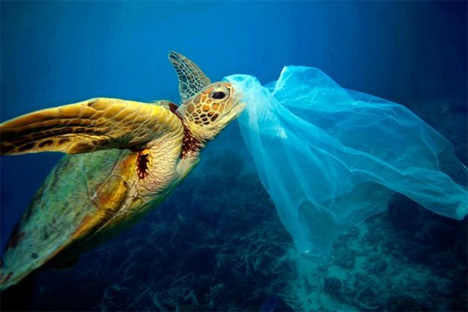 Οι επιστήμονες εκτιμούν ότι, αν δεν ληφθούν άμεσα μέτρα, μέχρι το 2050 στις θάλασσες θα... κολυμπούν περισσότερα πλαστικά από ψάρια