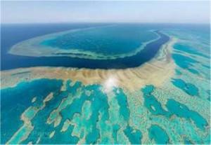 Ο Μεγάλος Κοραλλιογενής Υφαλος της Αυστραλίας πεθαίνει και οι προβλέψεις είναι δυσοίωνες για την τύχη του