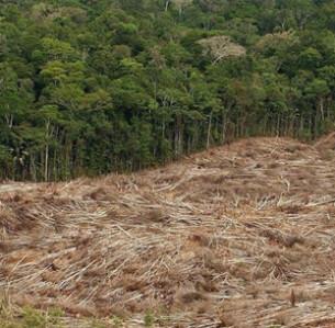 EPA/MARCELO SAYAO