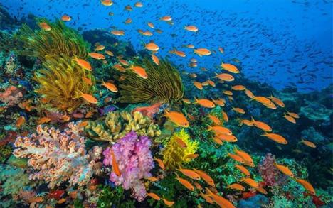 atmosf_rypansi_okeanoi